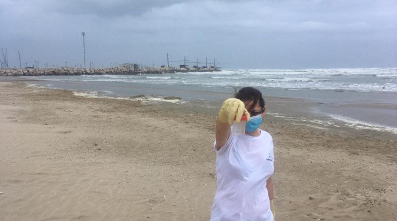 Acqua pulita nel mare di Senigallia: tutto ok dal monitoraggio della Goletta Verde